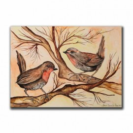 Aves Chilenas Chucao